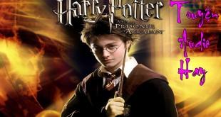 Harry Potter Và Chiếc Cốc Lửa