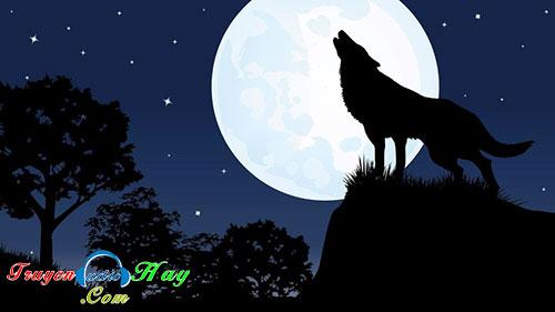 Con chó trắng đêm rằm - truyện audio tâm linh