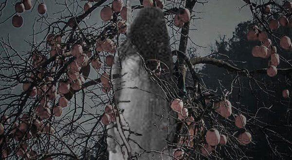 Thiếu nữ chết treo trên cây hổng đỏ – Seri Truyện Ma Rằm Tháng Tám